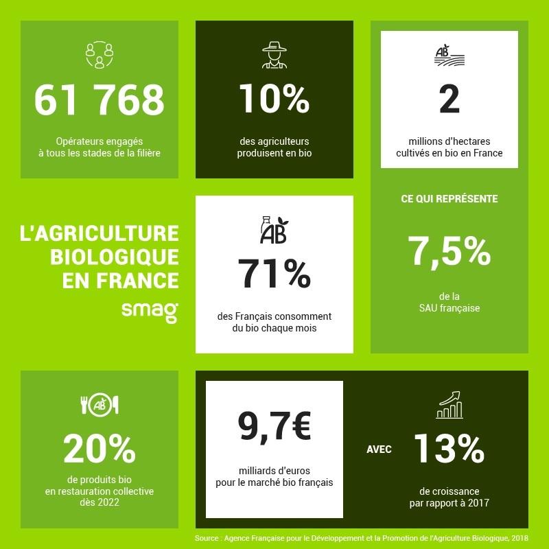 Infographie agriculture biologique en France