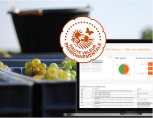 engagement des exploitants viticoles dans la certification HVE