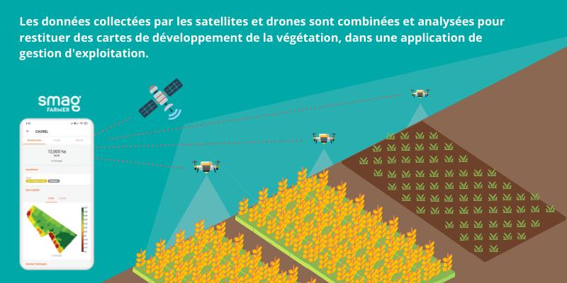 illustration de l'utilisation de drones agricoles