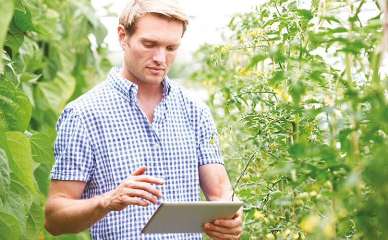 Smag web un portail unique d'échanges entre techniciens et producteurs