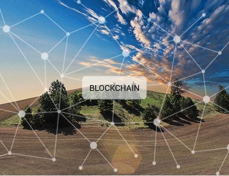 Qu'est-ce que la blockchain en agriculture ?