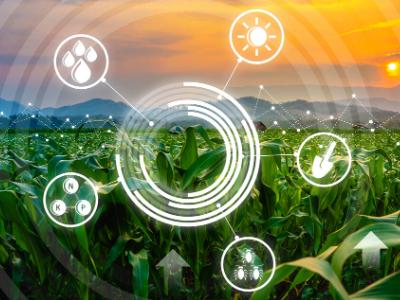 Comment valoriser ses données agricoles ?