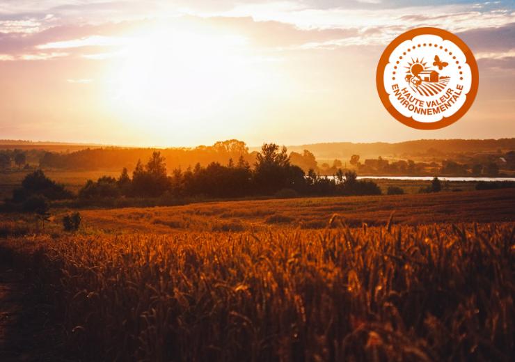 Qu'est-ce que la certification Haute Valeur Environnementale (HVE) ?