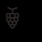 parcelle-vigne