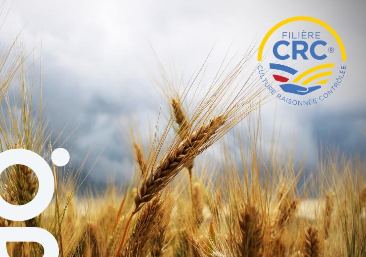 La filière CRC (Culture Raisonnée Contrôlée) : infos & exigences