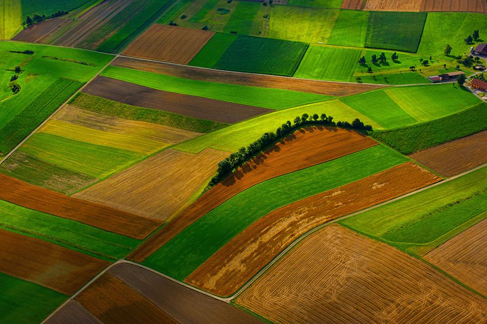 Logiciel agricole