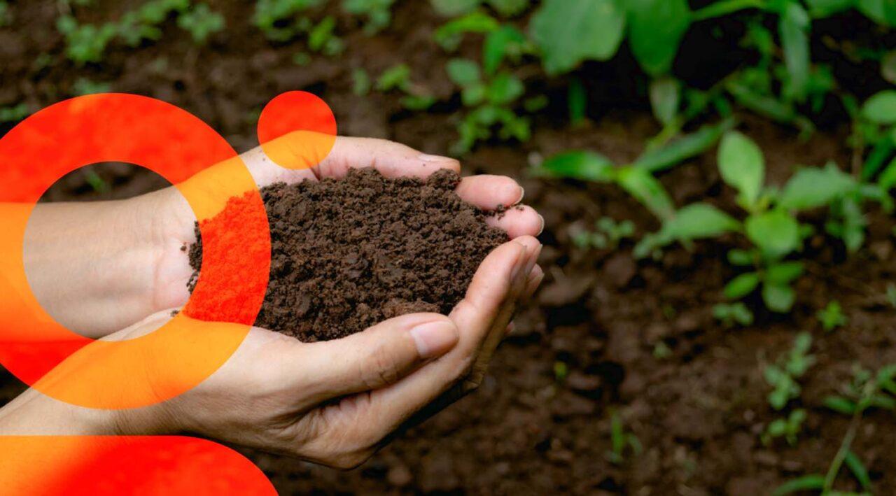 Gérer la fertilisation de ses cultures
