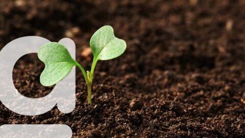 Logiciel pour la gestion des semences